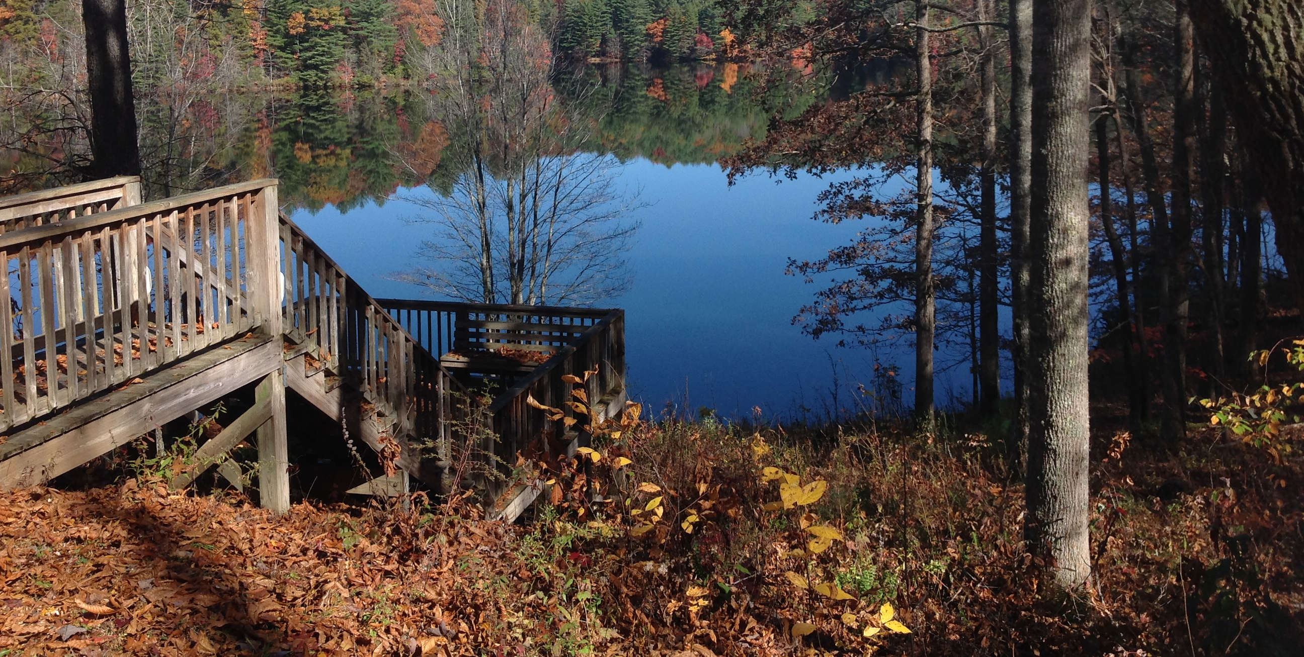 NCFS - DuPont Recreational State Forest - Home Page Dupont State Forest Map on